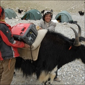 Honda generators being loaded onto a Yak